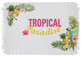 Plateau rectangulaire Tropical